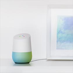 google home 250 0